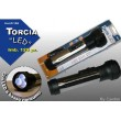 Cant. Torcia Plastica Led 27104